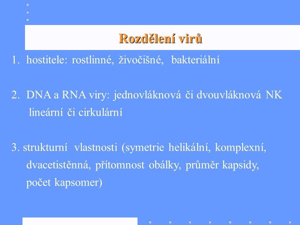 Rozdělení virů hostitele: rostlinné, živočišné, bakteriální