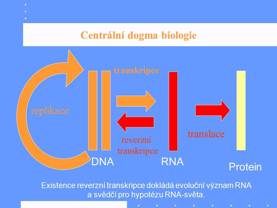 Centrální dogma biologie