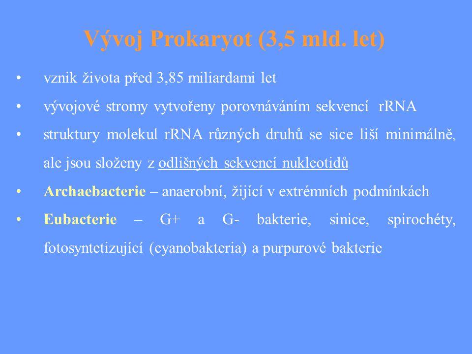 Vývoj Prokaryot (3,5 mld. let)