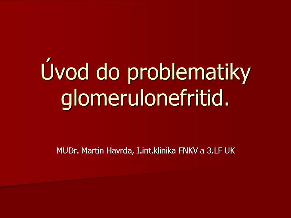 Úvod do problematiky glomerulonefritid.