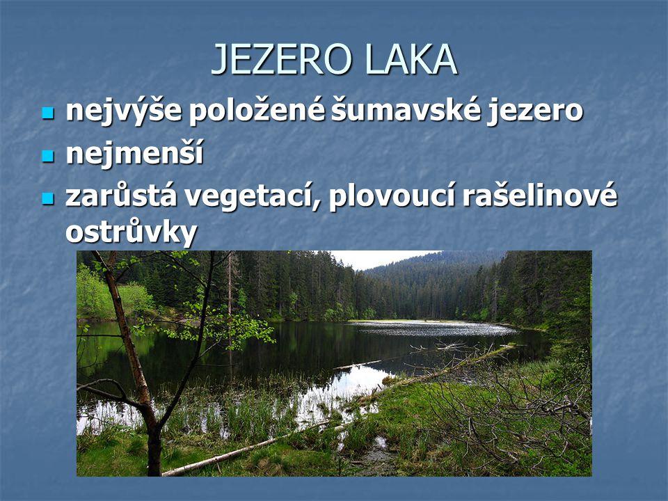 JEZERO LAKA nejvýše položené šumavské jezero nejmenší