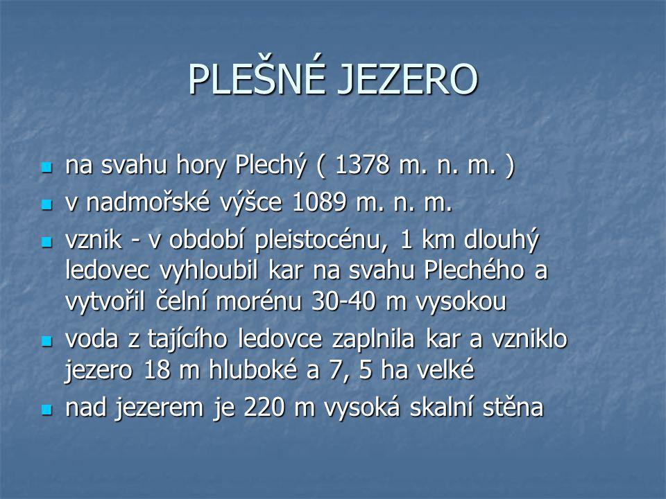 PLEŠNÉ JEZERO na svahu hory Plechý ( 1378 m. n. m. )