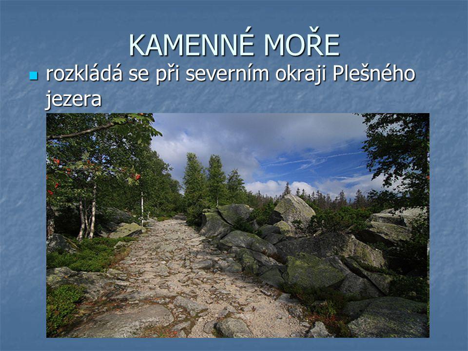 KAMENNÉ MOŘE rozkládá se při severním okraji Plešného jezera