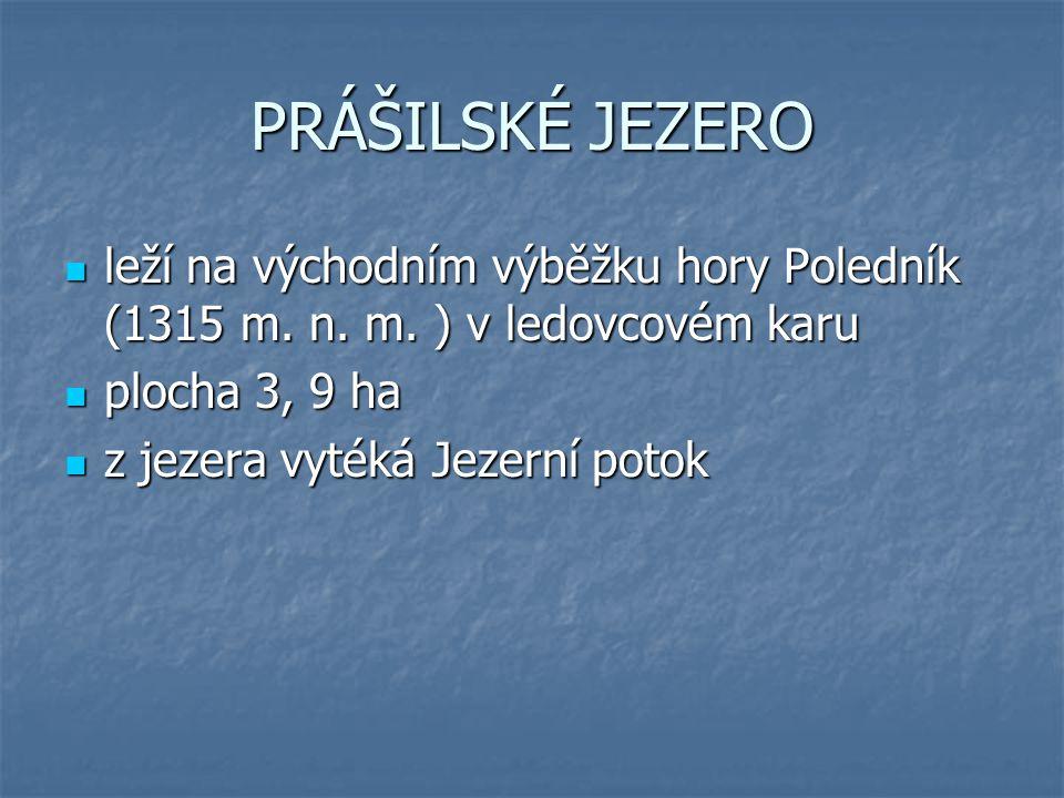 PRÁŠILSKÉ JEZERO leží na východním výběžku hory Poledník (1315 m. n. m. ) v ledovcovém karu. plocha 3, 9 ha.
