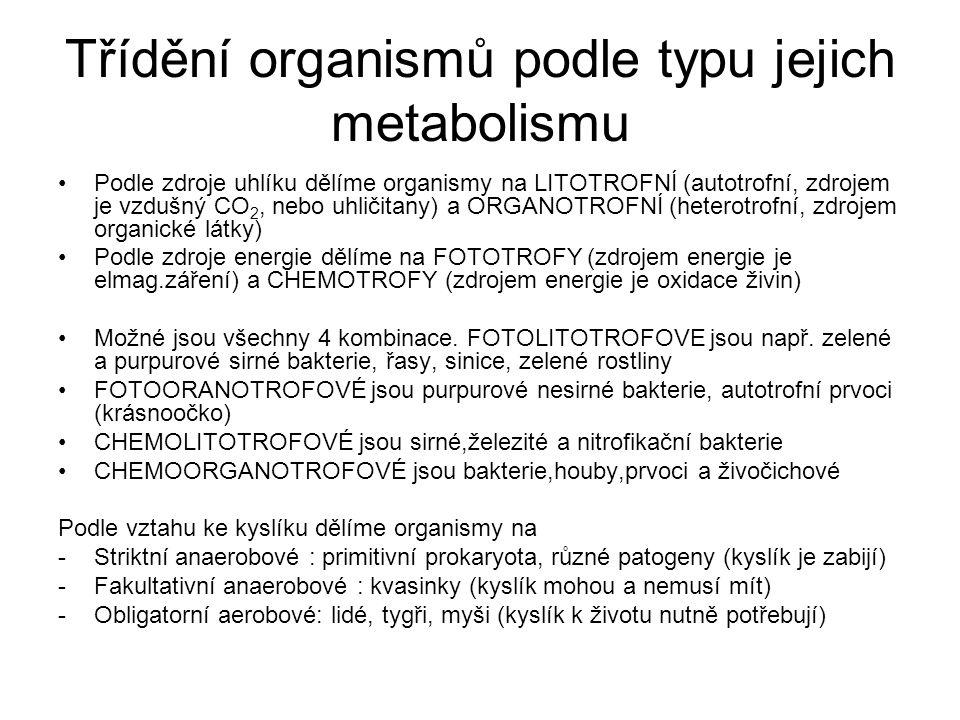 Třídění organismů podle typu jejich metabolismu
