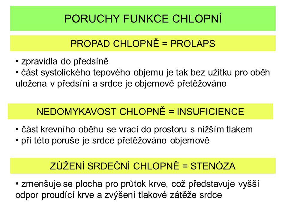 PORUCHY FUNKCE CHLOPNÍ