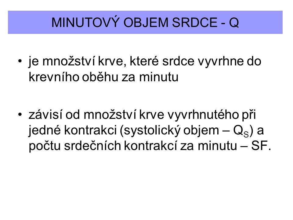 MINUTOVÝ OBJEM SRDCE - Q