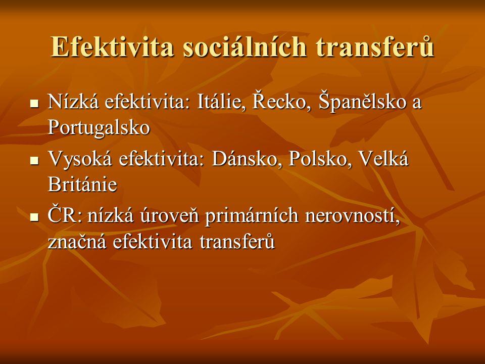 Efektivita sociálních transferů