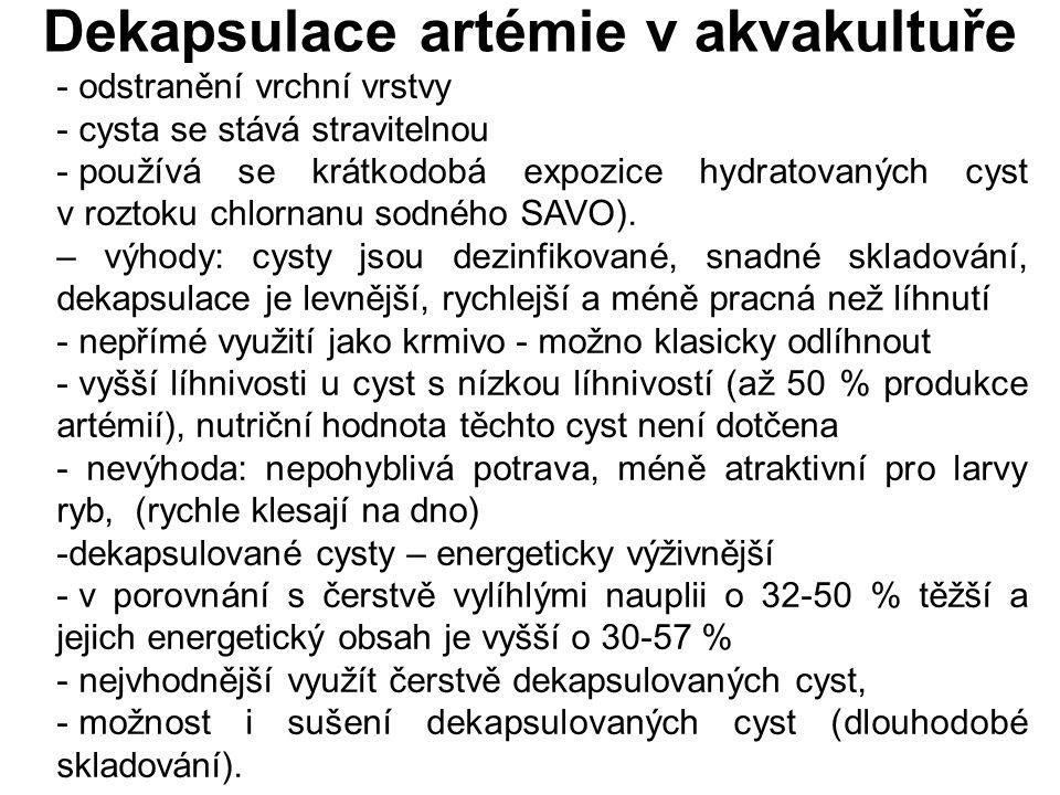 Dekapsulace artémie v akvakultuře