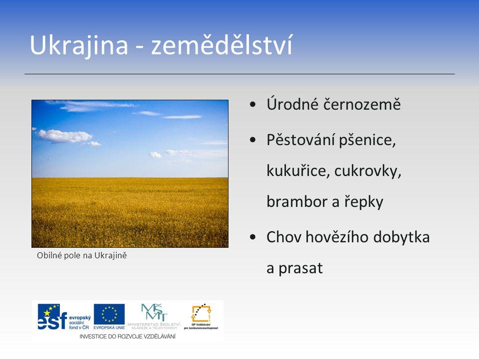 Ukrajina - zemědělství