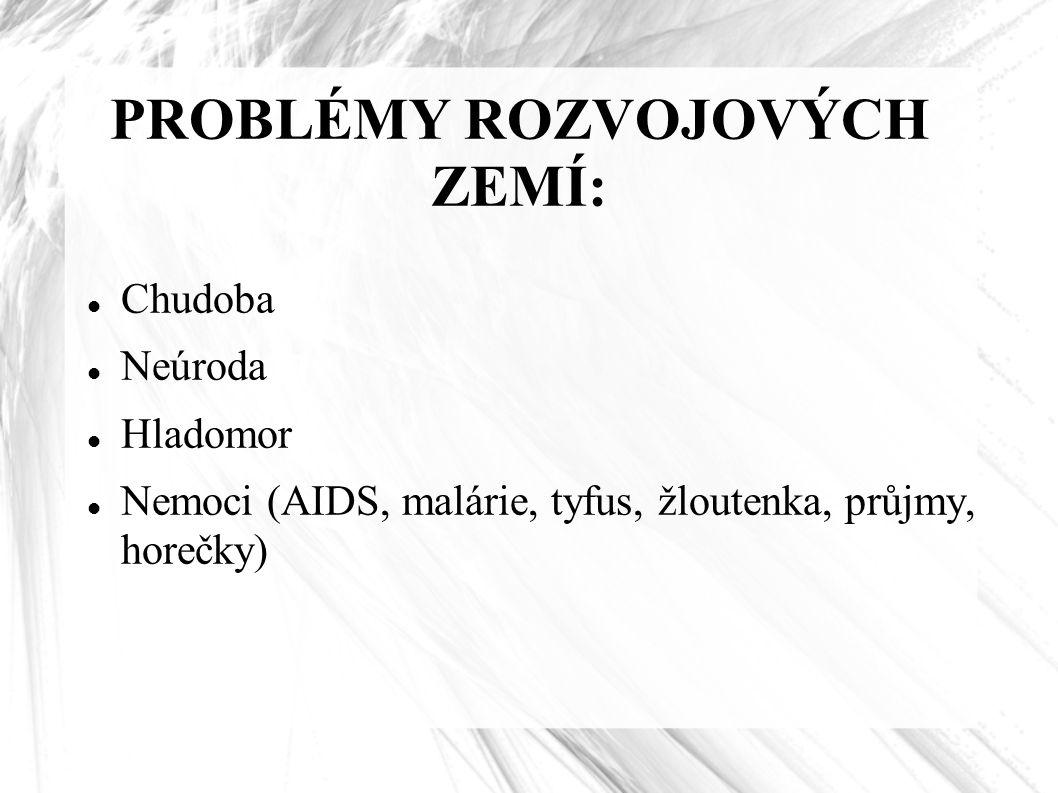 PROBLÉMY ROZVOJOVÝCH ZEMÍ: