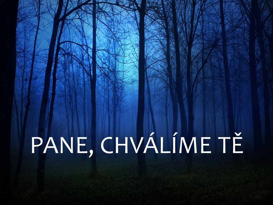 PANE, CHVÁLÍME TĚ