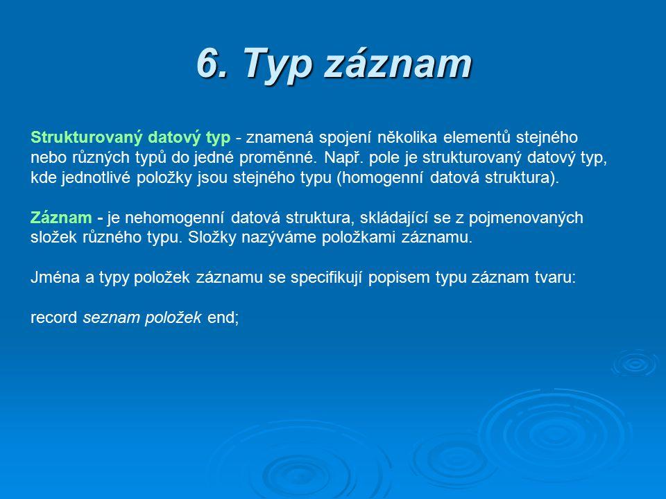 6. Typ záznam