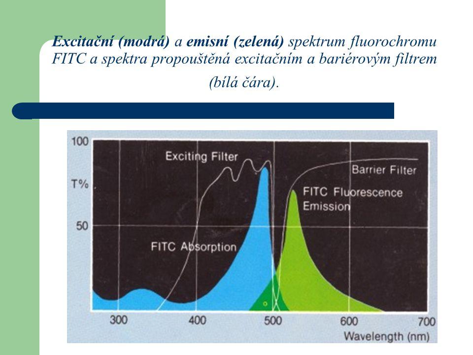Excitační (modrá) a emisní (zelená) spektrum fluorochromu FITC a spektra propouštěná excitačním a bariérovým filtrem (bílá čára).