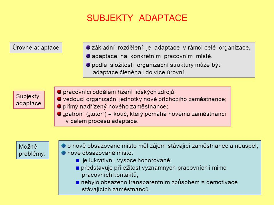 SUBJEKTY ADAPTACE Úrovně adaptace