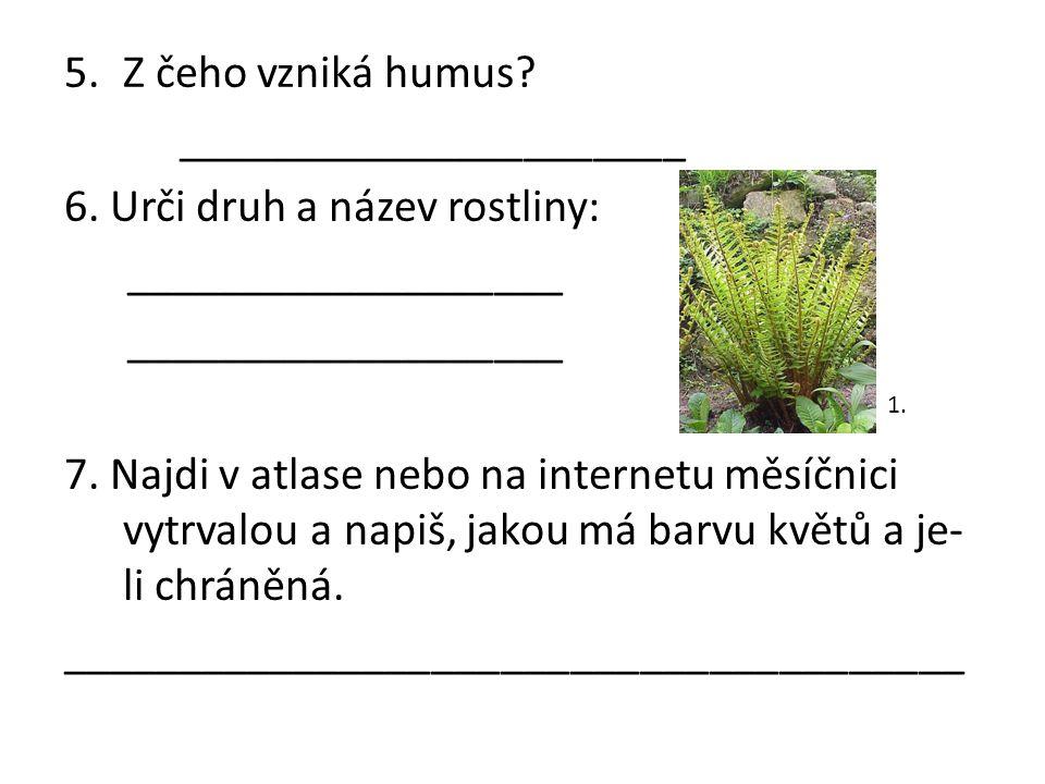 ______________________ 6. Urči druh a název rostliny: