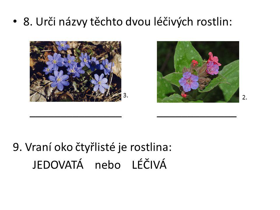 8. Urči názvy těchto dvou léčivých rostlin:
