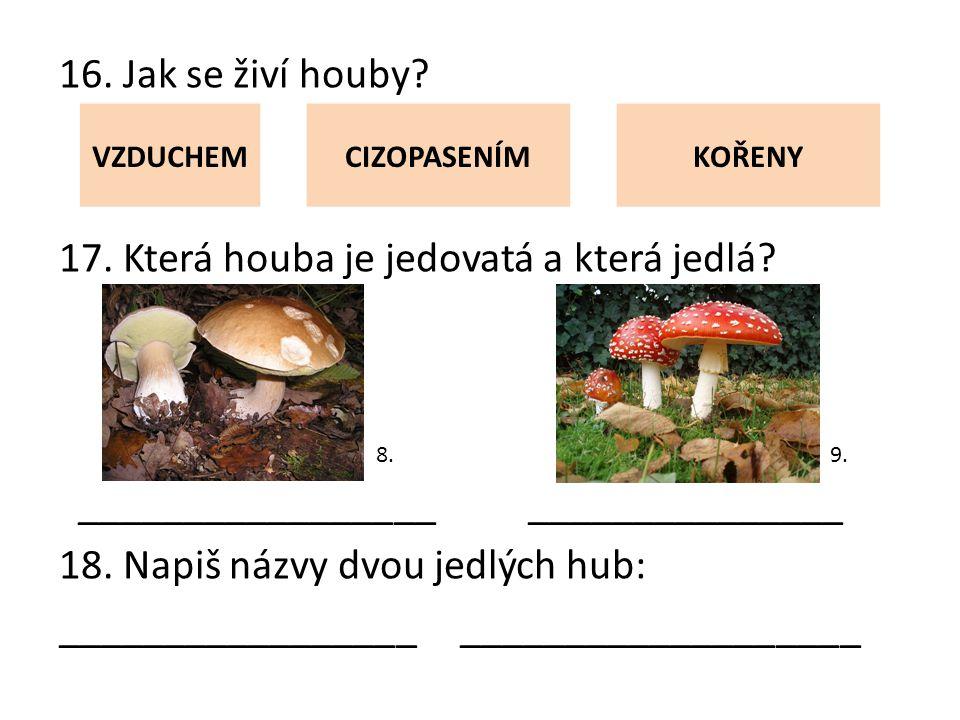16. Jak se živí houby. 17. Která houba je jedovatá a která jedlá