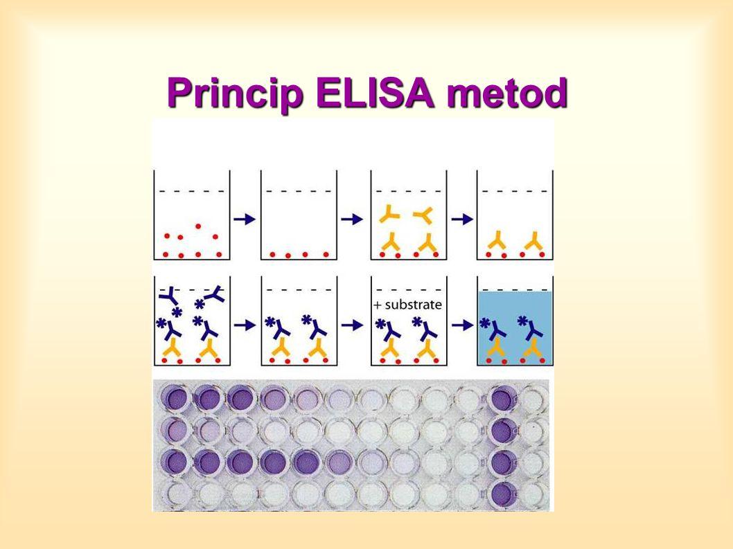 Princip ELISA metod Nepřímá kompetitivní ELISA
