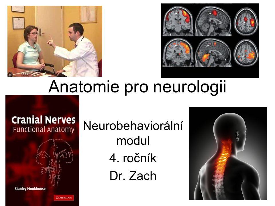 Anatomie pro neurologii