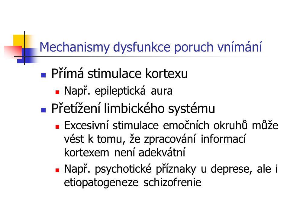 Mechanismy dysfunkce poruch vnímání