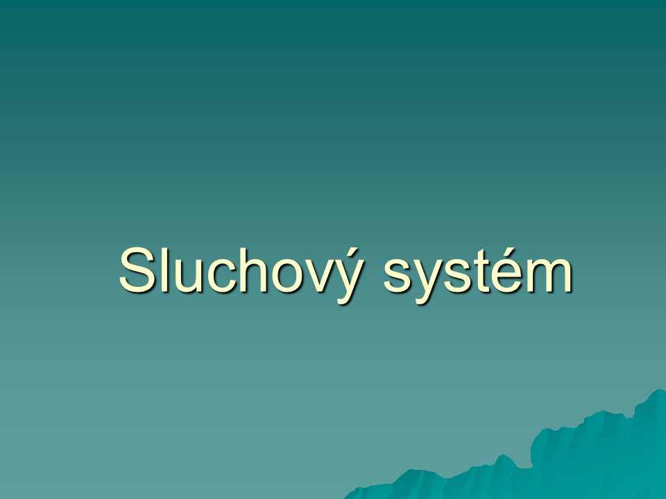 Sluchový systém