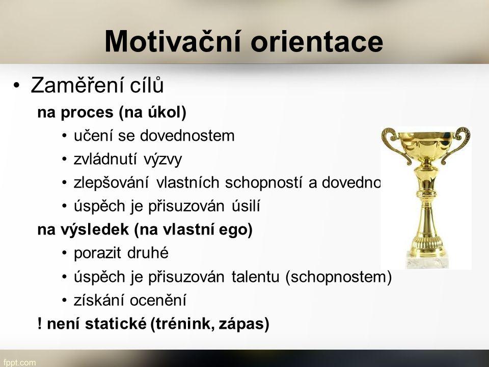 Motivační orientace Zaměření cílů na proces (na úkol)