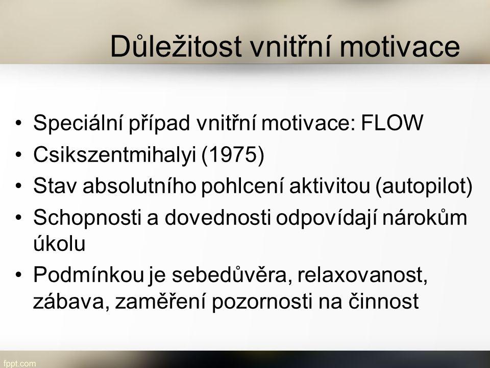 Důležitost vnitřní motivace