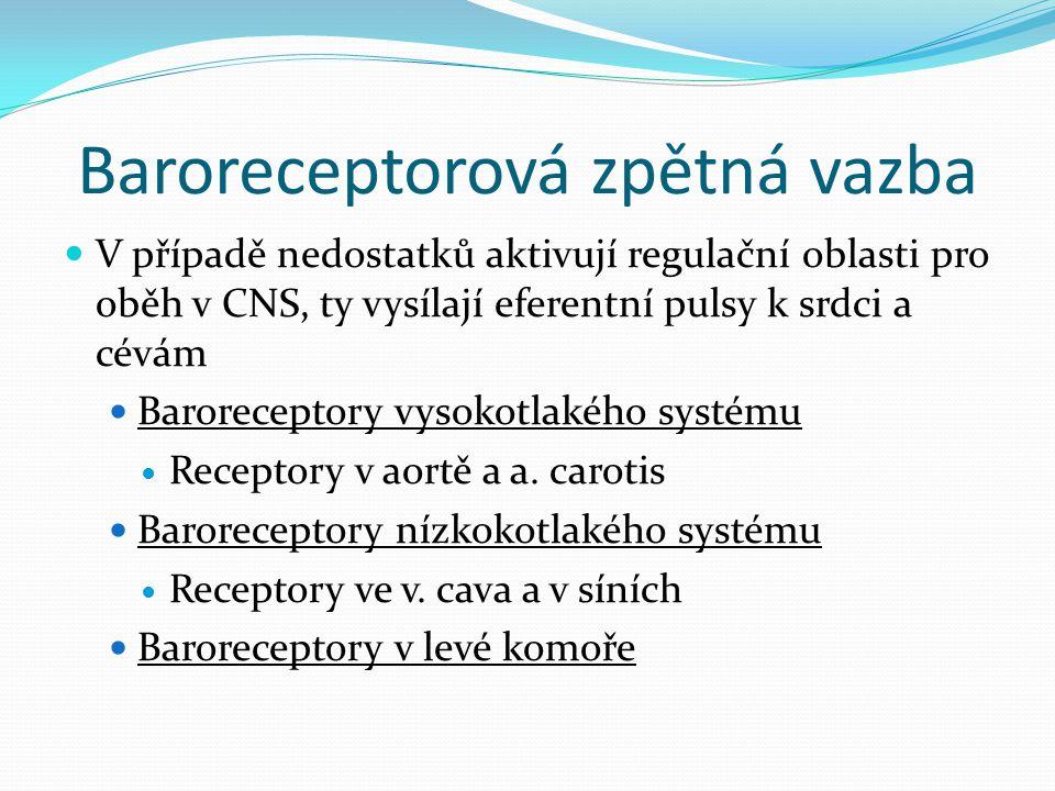 Baroreceptorová zpětná vazba