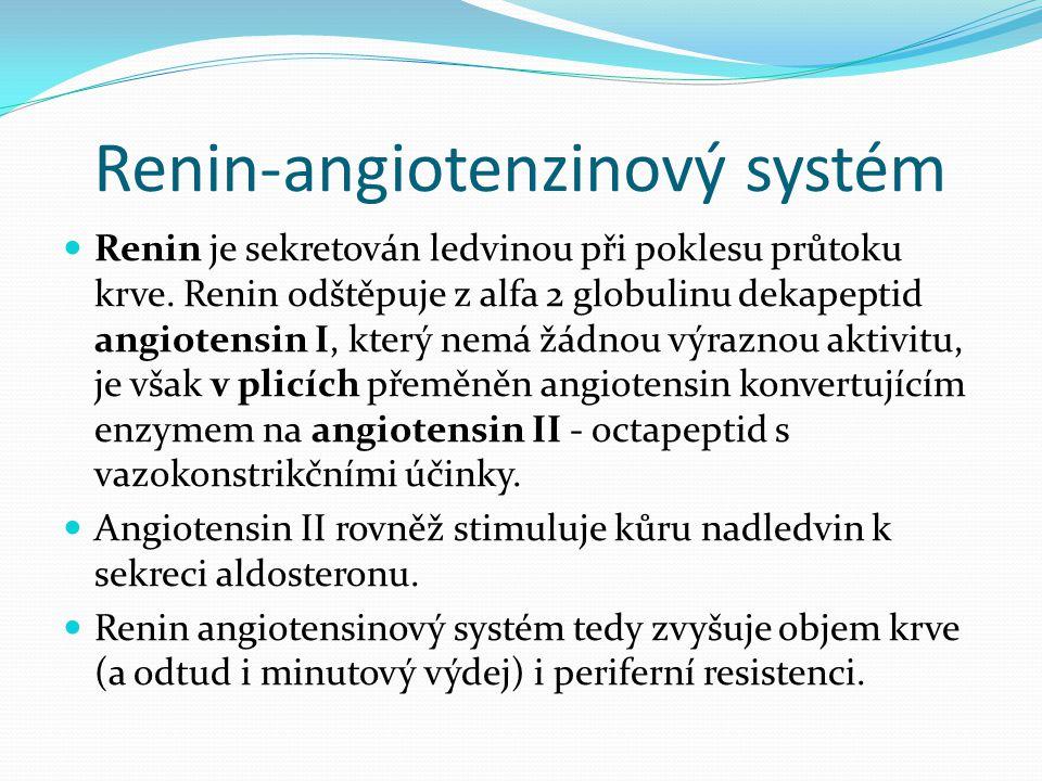 Renin-angiotenzinový systém