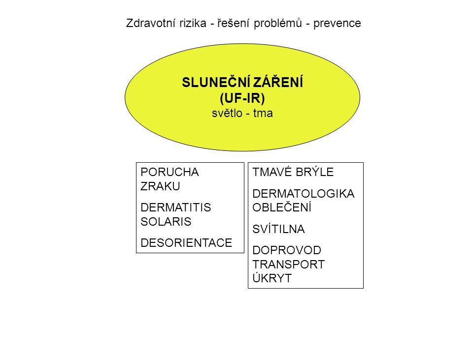 Zdravotní rizika - řešení problémů - prevence