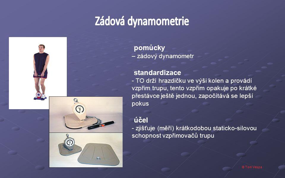 Zádová dynamometrie pomůcky standardizace účel – zádový dynamometr