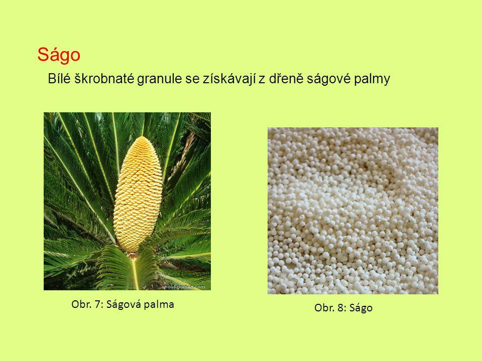 Bílé škrobnaté granule se získávají z dřeně ságové palmy