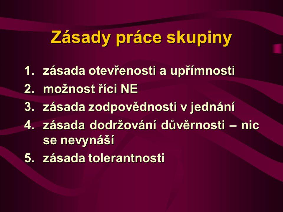 Zásady práce skupiny zásada otevřenosti a upřímnosti možnost říci NE