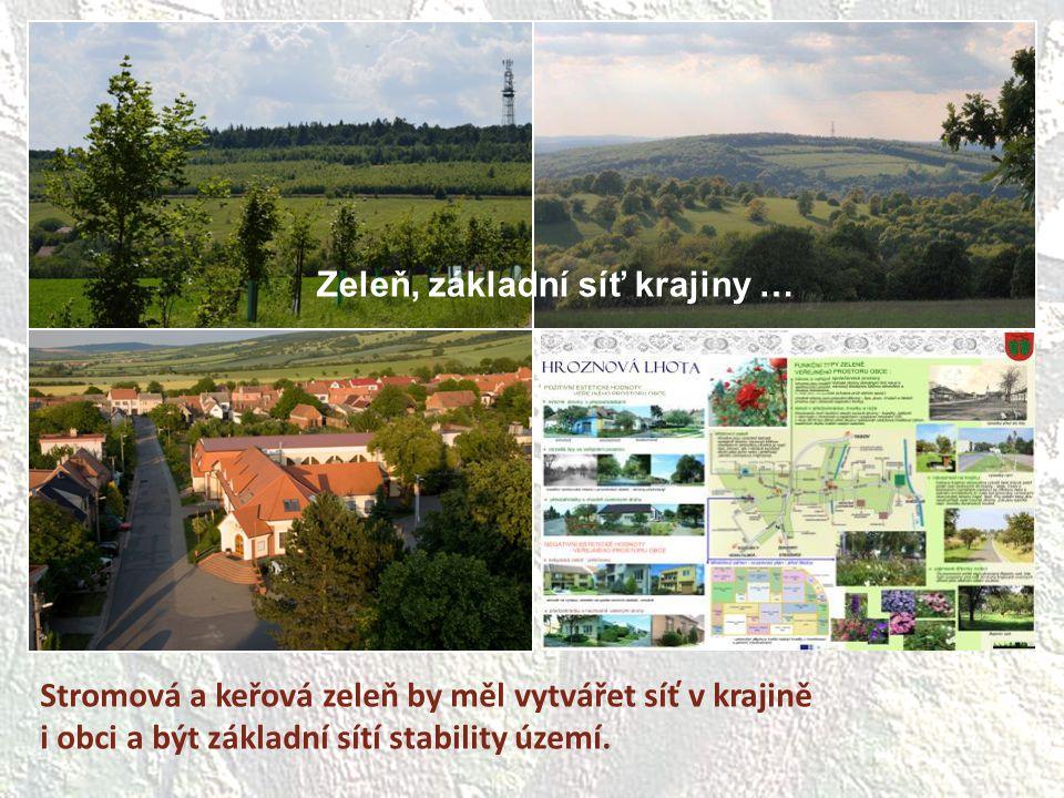 Zeleň, základní síť krajiny …