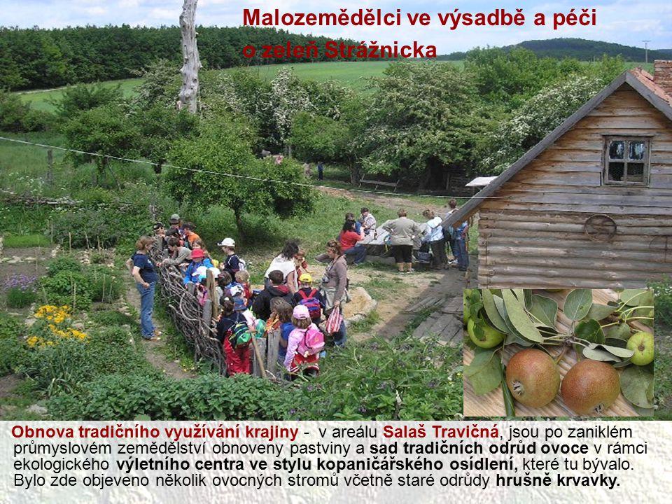 Malozemědělci ve výsadbě a péči o zeleň Strážnicka