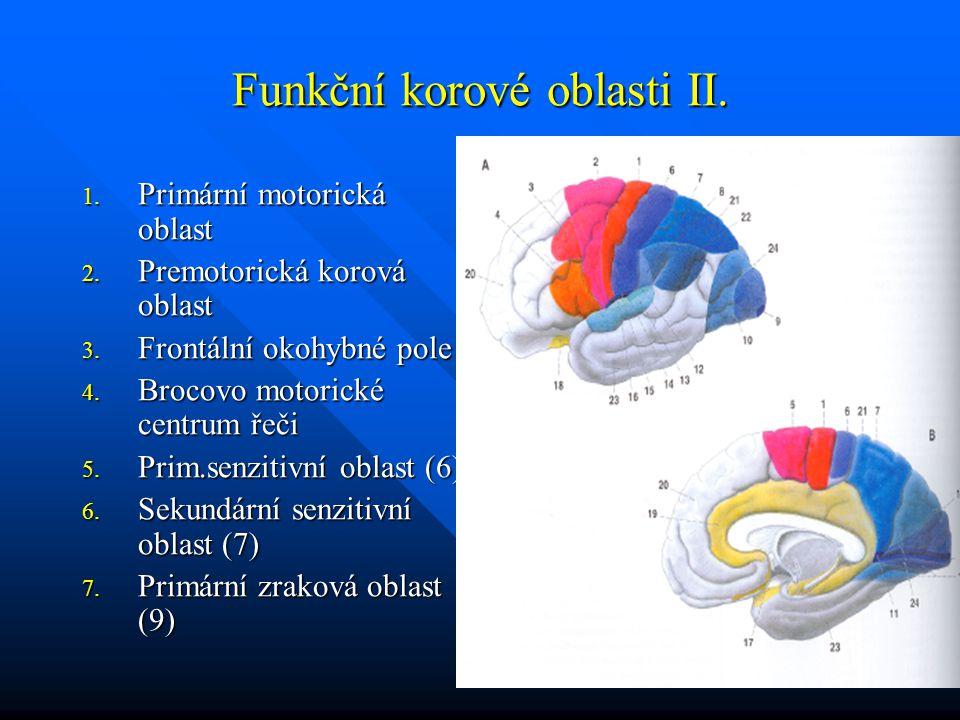 Funkční korové oblasti II.