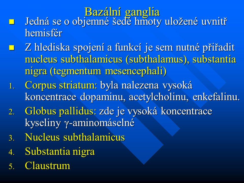 Bazální ganglia Jedná se o objemné šedé hmoty uložené uvnitř hemisfér