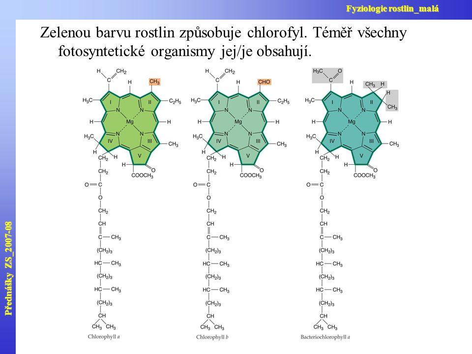 Přednášky ZS_2007-08 Fyziologie rostlin_malá. Zelenou barvu rostlin způsobuje chlorofyl. Téměř všechny fotosyntetické organismy jej/je obsahují.