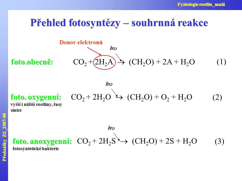 Přehled fotosyntézy – souhrnná reakce