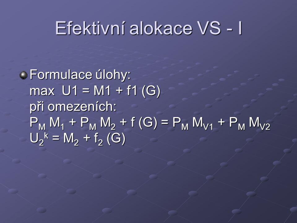 Efektivní alokace VS - I