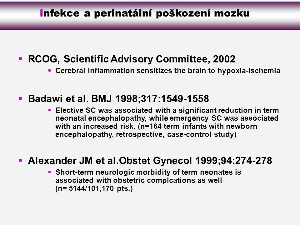Infekce a perinatální poškození mozku