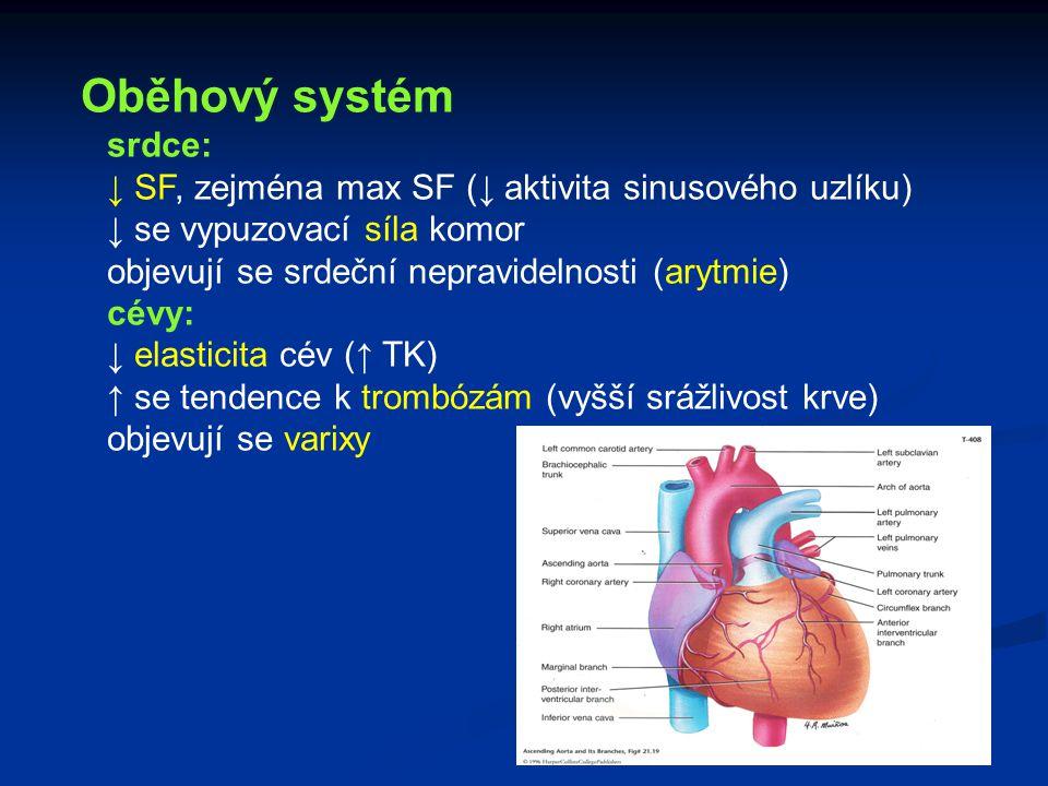Oběhový systém srdce: ↓ SF, zejména max SF (↓ aktivita sinusového uzlíku) ↓ se vypuzovací síla komor.