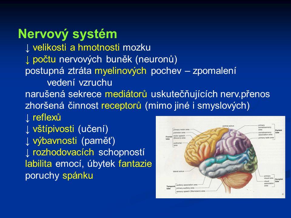 Nervový systém ↓ velikosti a hmotnosti mozku