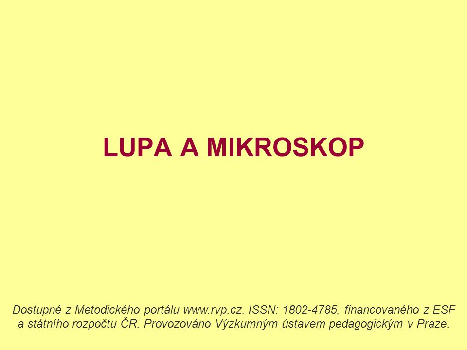 LUPA A MIKROSKOP