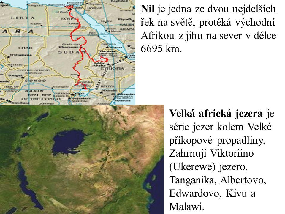 Nil je jedna ze dvou nejdelších řek na světě, protéká východní Afrikou z jihu na sever v délce 6695 km.