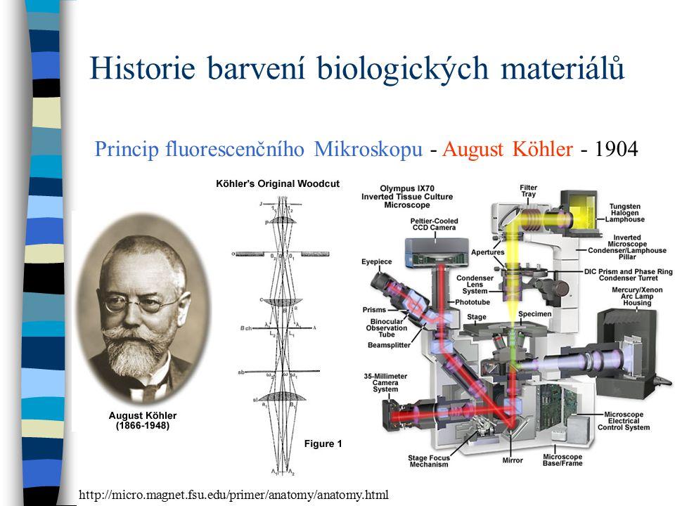 Historie barvení biologických materiálů