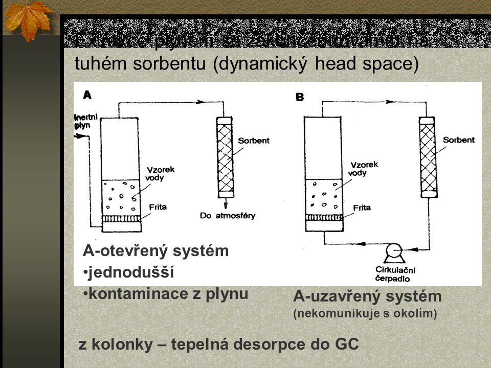 Extrakce plynem se zakoncentrováním na tuhém sorbentu (dynamický head space)
