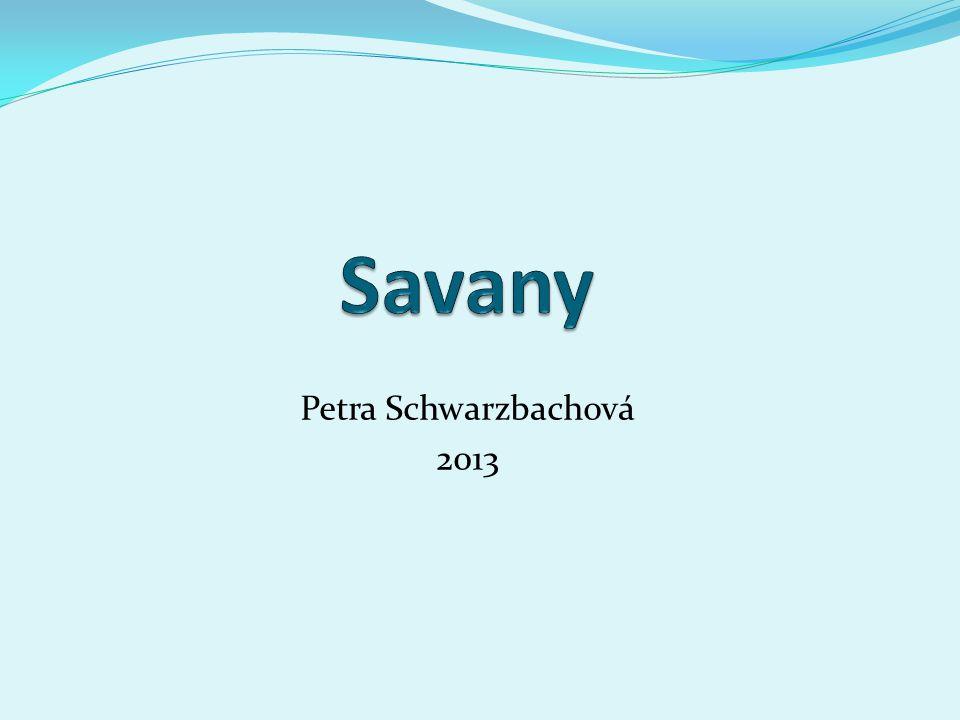 Savany Petra Schwarzbachová 2013