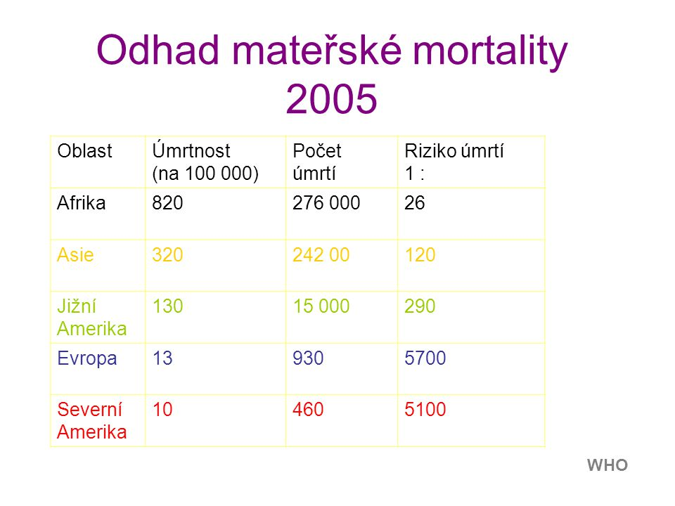Odhad mateřské mortality 2005